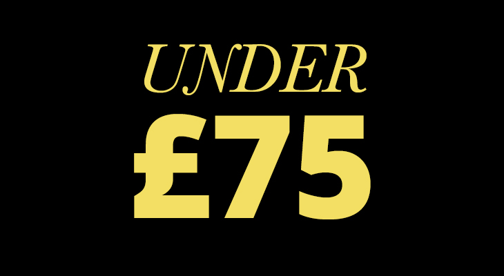 Black Friday Deals Under £75