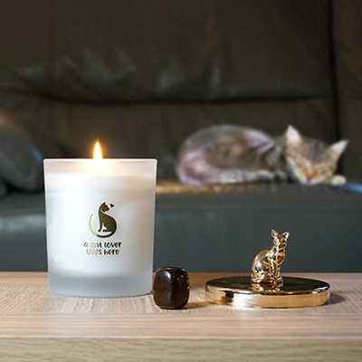 Cat Lover's Candle - Zesty Lime Scent
