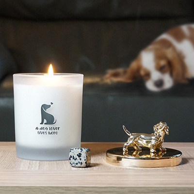 Dog Lover's Candle - Zesty Lime Scent